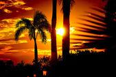 Dominican Republic - sunset — Stock Photo
