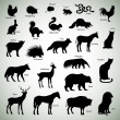 Animal silhouettes — Stock Vector #38615301