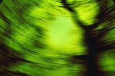 Vórtice verde — Fotografia Stock