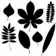 Vector Collection of Leaf Silhouettes isolated on white background — Stock Vector