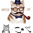 Hipster tabby cat isolated on white with hipster elements and icons — Stock Vector #35682603