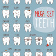 Teeth mega set. Big dental collection for your design — Stock Vector #35683661