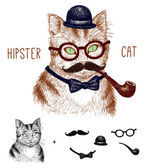 Hipster tabby cat isolated on white with hipster elements and icons — Stock Vector