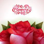 """Rosas vermelhas com letras de """"flores. — Vetor de Stock"""