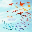 Colorful silhouettes of flying birds. — Stock Vector #51220207