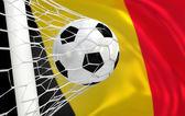 比利时在目标网挥舞着国旗和足球球 — 图库照片