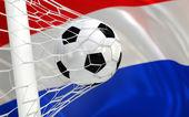 нидерланды, размахивая флагом и футбольный мяч в ворота — Стоковое фото