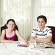 Brother and Sister Doing their Homework — Foto Stock