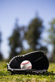 Baseball glove & mitt — Stock Photo