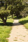 Hiking trail — Foto Stock