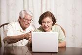 Senior couple on a laptop — Stock Photo