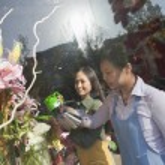 Florist Working In Flower Shop — Stock Photo