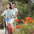 Couple riding tandem bicycle — Stock Photo