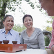 Mature people drinking Chinese tea in the park — Stock Photo #36082777