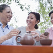 Mature women drinking Chinese tea in the park — Stock Photo