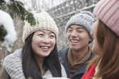 Friends talking in a park in the snow — Stock Photo