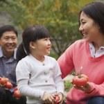 Happy family in garden — Stock Photo