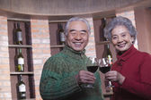 Couple Toasting with Wine Glass — Stock Photo