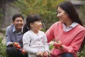 Lycklig familj i trädgården — Stockfoto
