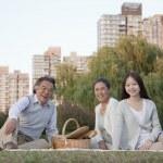Family picnic in the park — Stock Photo #36351505