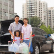 Family with shopping cart standing next to the car — Stock Photo