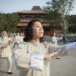 Stock Photo: Chinese Practicing Tai Ji
