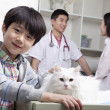 Boy with pet dog in veterinarian's office — Stock Photo