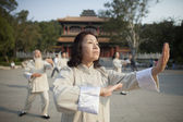 Chinese Practicing Tai Ji — Stock fotografie