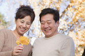 Mature Couple Looking at the Leaf in the Park — Stock Photo