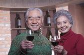Senior Couple Enjoying Wine — Stock Photo