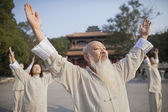 Chinese Practicing Tai Ji — Stock Photo
