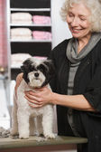 Woman and dog at pet grooming salon — Stock Photo