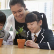 Students and teacher examining potted plants — Stock Photo