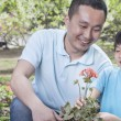 Father and son planting flowers — Stock Photo #36654981