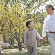 Grandfather and grandson going for a walk in the park — Stock Photo
