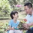 Father and son planting flowers — Stock Photo #36656469