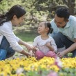 Family sitting in flower garden — Stockfoto