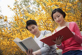 Couple sitting on a park bench reading books — Stock Photo