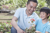 Father and son planting flowers — Stock Photo