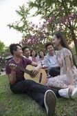 Six friends having a picnic — Stock Photo