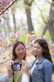 Person taking a photo of two young women in a park — Stock Photo