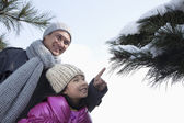 Father with daughter pointing at tree branch — Stock Photo