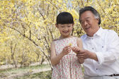 Smiling girl and her grandfather looking at a flower — Stock Photo