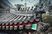 Ornate roof tiles on Chinese building — Stock Photo