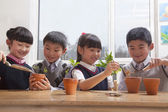 Schoolchildren planting plants into flowerpots — Stock Photo