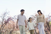 Family taking a walk amongst the cherry trees — Stock Photo