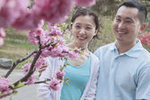 Couple looking at cherry blossoms — Stock Photo