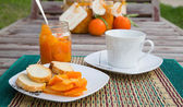 Tangerine marmalade and a cup of warm milk — Stock Photo
