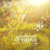 Sketch on summer dreams on the background images. butterflies on a background of grass and sunlight — Stock Vector