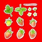 Watercolor set. Stickers with strawberries, leaves and flowers on a red background — Vector de stock
